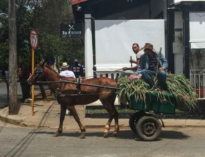 Horse-Power-Rural-Cuba